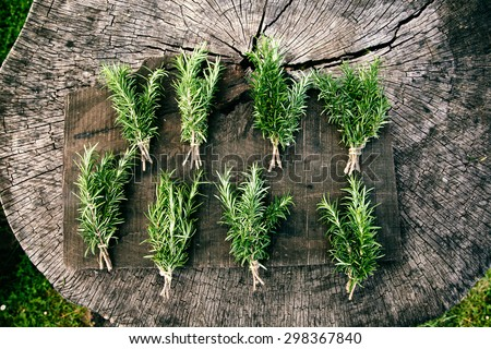 Herb Rosemary. Bunches of fresh herbs on wood. Food ingredients - stock photo