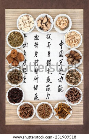 Herb selection in porcelain bowls with calligraphy script. Translation describes chinese herbal medicine as increasing the bodys ability to maintain body and spirit health and balance energy. - stock photo