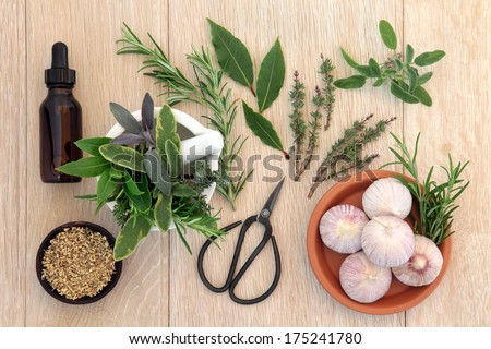 Herb selection with aromatherapy essential oil bottle and old gardening scissors over brown paper background. - stock photo