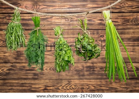 Herb. Set of Spice Herbs  /  isolated on white background /  bunches of thyme, basil, oregano, parsley, sage and rosemary are hanging and drying - stock photo