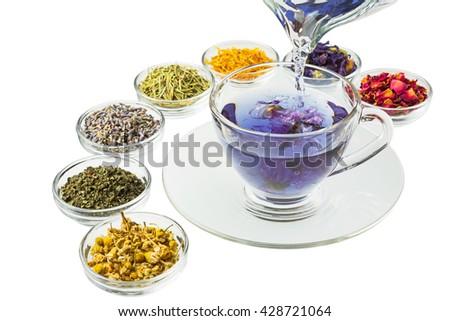 Herb tea of the blue marrow - stock photo