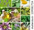 Herbage - medicine collage - stock photo