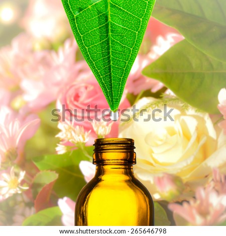 Herbal, alternative medicine, water drop falling down from a leaf to the bottle, flower background - stock photo