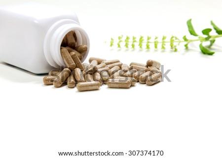 herbal medicine, a herbal healer, alternative medicine - stock photo