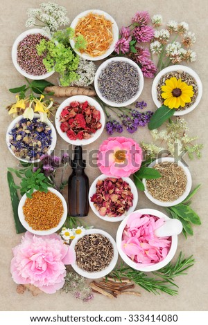 Herbal medicine flower and herb selection with dropper bottle and mortar with pestle forming an abstract background over handmade hemp paper background. - stock photo