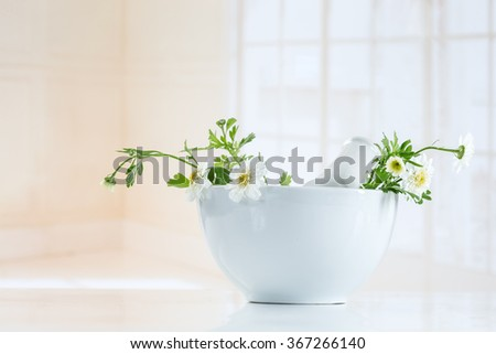 Herbal medicine healing herbs, mortar and pestle  - stock photo