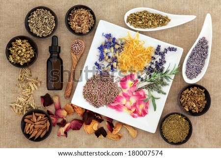 Herbal medicine selection also used in pagan witches magical potions over old paper background. - stock photo