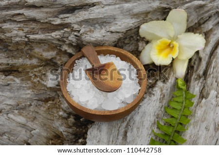 herbal salt in bowl and green fern with orchid on driftwood - stock photo