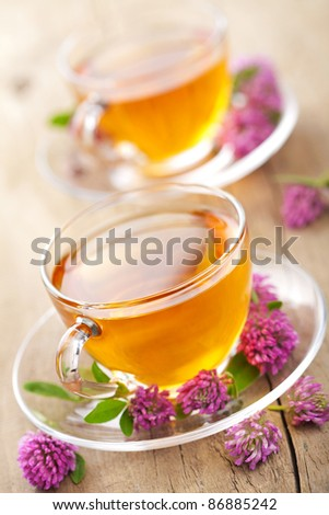 herbal tea and clover flowers - stock photo