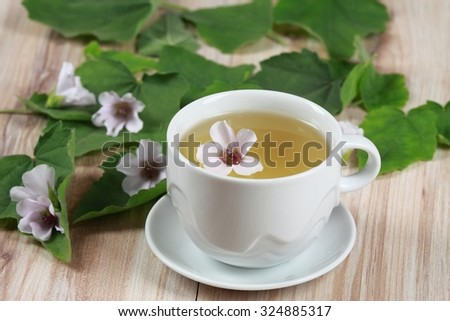 Herbal tea from marshmallow
