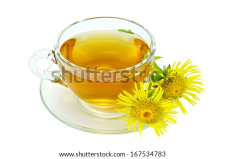 Herbal tea in a glass cup and saucer, yellow flowers of elecampane isolated on a white background
