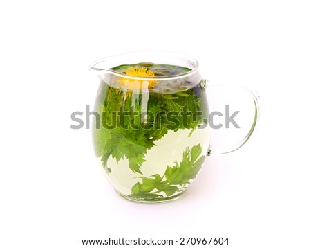 herbal tea in a glass jug on white background - stock photo