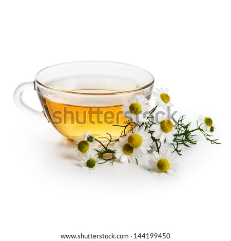 Herbal tea with fresh chamomile flowers on white background - stock photo