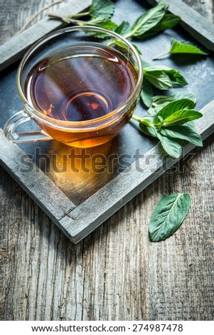 Herbal tea with pepper mint - stock photo