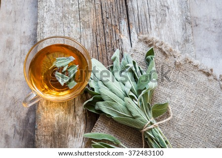 Herbal tea with sage/toned photo - stock photo