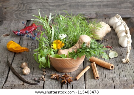 Herbs and spices in mortar on wooden boards - stock photo