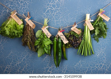 Herbs and spices on a blue background; healthy eating; organic food; basil; hot peppers; papperoni;  green onion; rosemary; ingredients for cooking; Cover for a cookbook;organic food; harvest - stock photo