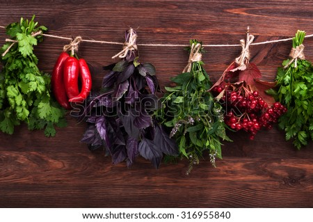 Herbs and spices on dark wood background; parsley; mint; hot peppers; cilantro; Purple basil; viburnum; harvesting herbs for the winter; herbal therapy; Cover for a cookbook; background; substrate - stock photo