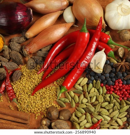 Herbs and spices selection. Aromatic ingredients and natural food additives. Cuisine elements. - stock photo