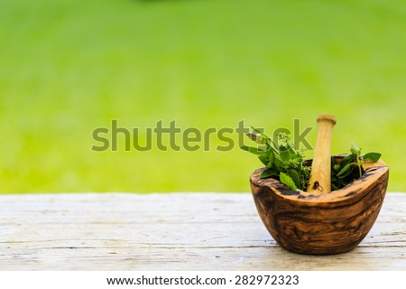 Herbs - Fresh herbs in a mortar
