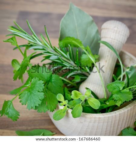 herbs in mortar - stock photo
