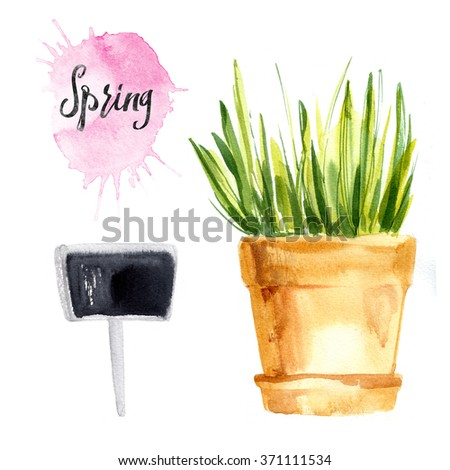 Herbs in pots painted with watercolors on white background. Slate tablet. Spring. Easter decor. - stock photo