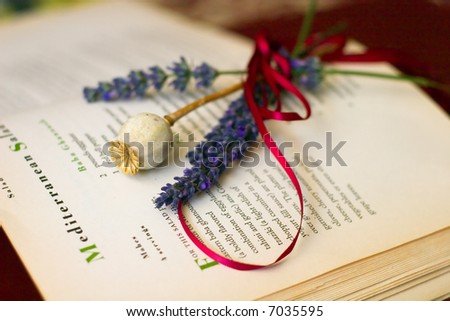 herbs on the book - stock photo