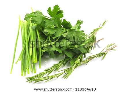 Herbs on white background - stock photo