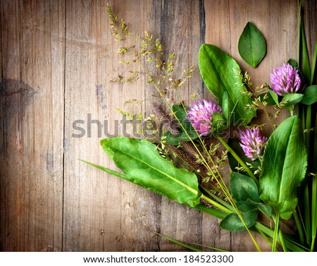 Herbs over Wood. Treatment Plant. Herbal Medicine. Spring Herbal Background. Grass - stock photo
