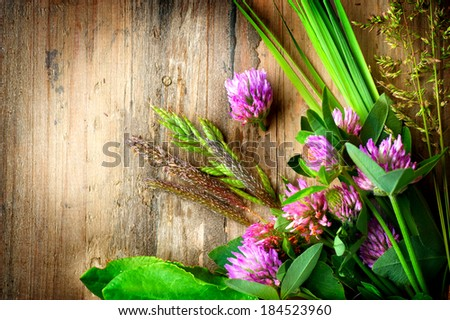 Herbs over Wooden background. Grass on wood. Treatment Plant. Herbal Medicine. Spring Herbal Background.  - stock photo
