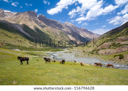 Herd of horses pasturing in Tien Shan mountains, Kyrgyzstan - stock photo