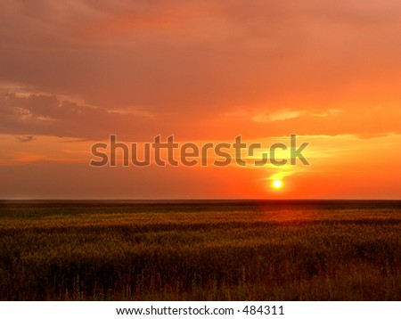 Here is a sunset on a field.