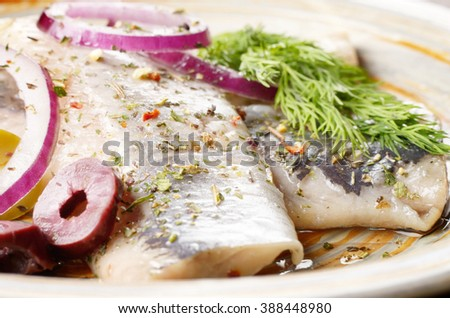 Herring fillets served with olives onions and dill - stock photo