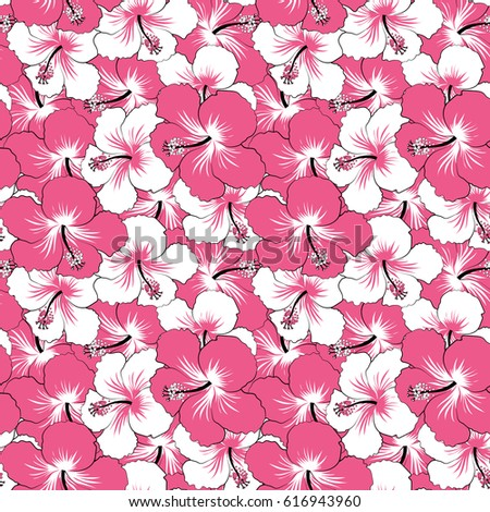 Hibiscus flowers in pink and white colors. Watercolor painting effect, of pink and white hibiscus flowers, blossom with leaves isolated. Hand drawn sketch.