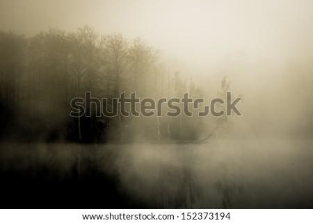 Hidden house on a sloping lake shore - stock photo