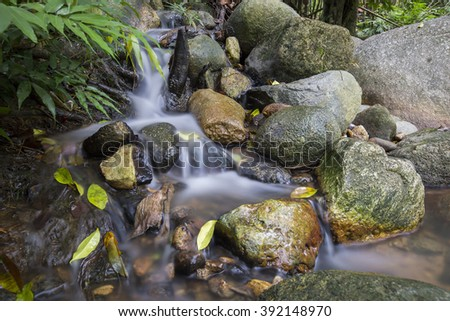 Hidden rain forest stream with lush foliage and mossy rocks. Nature composition,soft focus, grainy effect and vibrant colours.