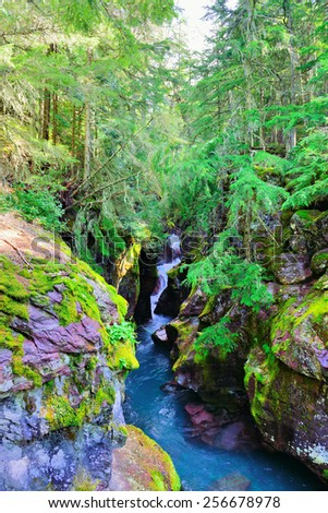 hidden waterfall along the Avalanche lake trail in Glacier National Park - stock photo