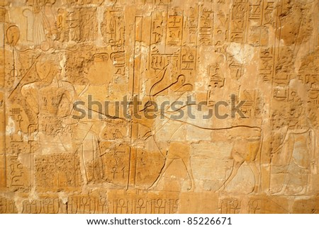 "Hieroglyphic carvings in the walls at of an Egyptian ancient temple.Early ""Hieroglyphs"" were logograms representing words using graphical figures such as animals, objects or people. - stock photo"