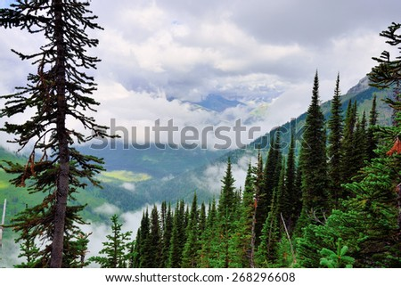 high alpine landscape of the glacier national park in summer