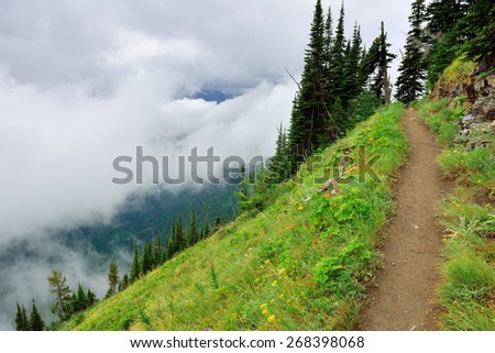 high alpine trail and heavy fog in glacier national park in summer - stock photo