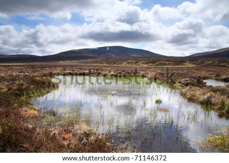High altitude peat bog in the in the Feshie estate of the Scottish highlands. - stock photo