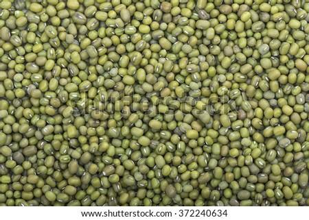 High angle closeup shot of harvest of whole green Vigna radiata mung beans filling frame of camera - stock photo