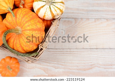 High angle image of a basket filled with autumn decorative pumpkins and gourds. Horizontal format on a white wood table with copy space. - stock photo