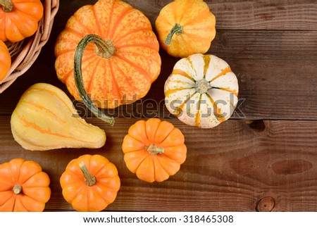 High angle shot of a Fall Gourd Still Life. Assorted gourds and pumpkins on a rustic dark wood background. - stock photo