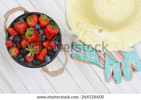 High angle shot of an old metal bucket of fresh picked berries on a rustic whitewashed wood table. A yellow sun hat and gardening gloves are next to the pail. - stock photo