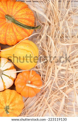 High angle still life of autumn decorative pumpkins and gourds with straw. Vertical format on a white wood table with copy space. - stock photo