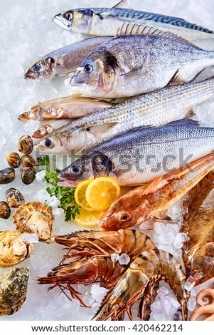 High Angle Still Life View of Fresh Raw Fish, Shellfish and Seafood Arranged in Attractive Display and Chilling on Bed of Cold Ice with Lemon Wedges - stock photo