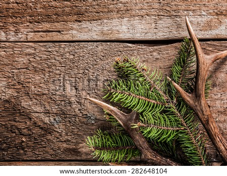 High Angle View of Evergreen Branch with Deer Antler Against Rustic Wooden Background with Copy Space - stock photo