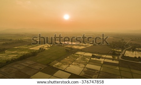 High angle view of rice fields sunset. - stock photo