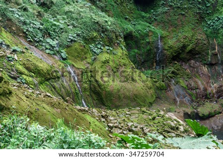 High angle view of rocks covered by moss in a forest, Costa Rica - stock photo
